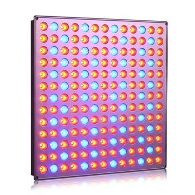 Reldadro LED Grow Light