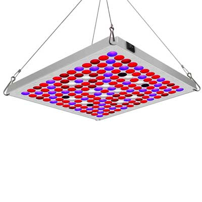 Toplanet LED Grow Lights