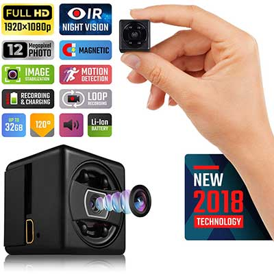 Lilexo Mini Secret 1080p Camera with Night Vision and Motion Detection