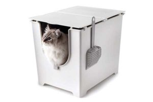 best cat litter boxes reviews