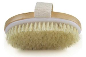 best body brushes reviews