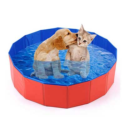 Mcgrady 1xm Collapsible Pet Dog Pool Large