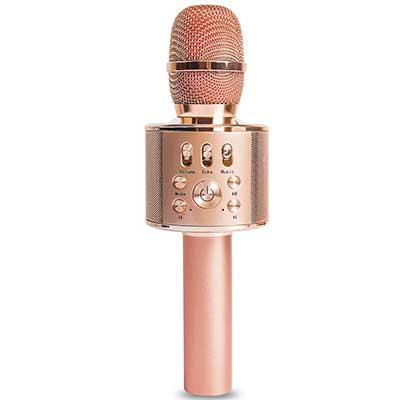 Diyomate Wireless Bluetooth Karaoke Microphone Handheld KTV Microphone