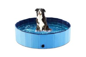 best dog bath tubs reviews