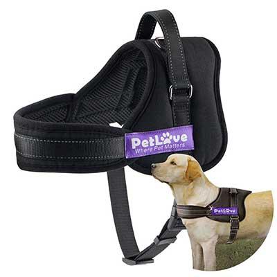 PetLove Dog Harness, Soft Leash Padded Harness No Pull
