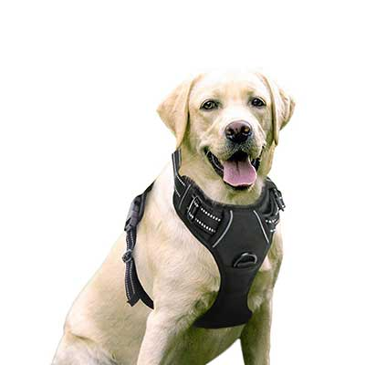 Rabbitgoo Dog Harness No-Pull Pet Harness Adjustable