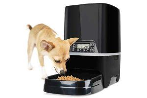 best automatic dog feeders reviews