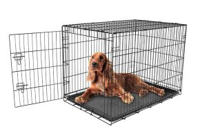 best dog crates for large dogs reviews