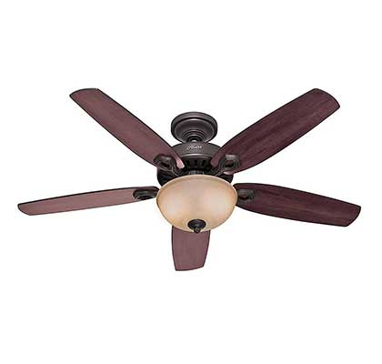 Hunter Indoor Ceiling Fan with Light