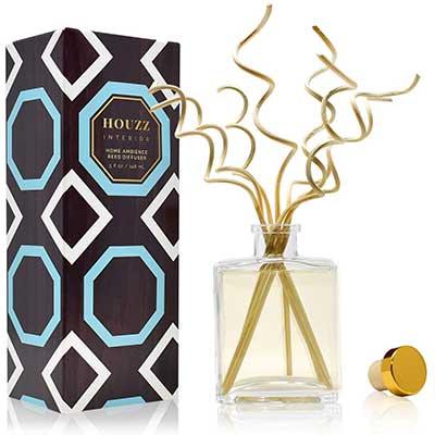6. HOUZZ Interior Lemongrass & Ginger Home Fragrance Reed Diffuser