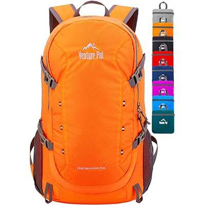10. Venture Pal 40L Lightweight Packable Waterproof Backpack