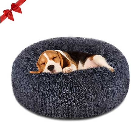 1. Focuspet Dog Bed Cat Donut
