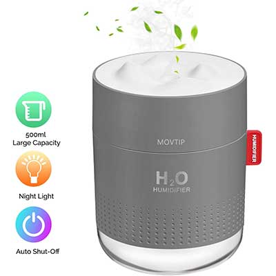 Portable Mini Humidifier, 500ml Small Cool Mist