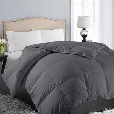 EASELAND All Season Queen Size Soft Quilted Comforter