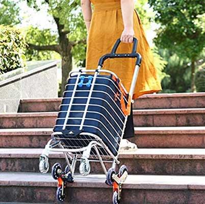 BeebeeRun Folding Shopping Cart
