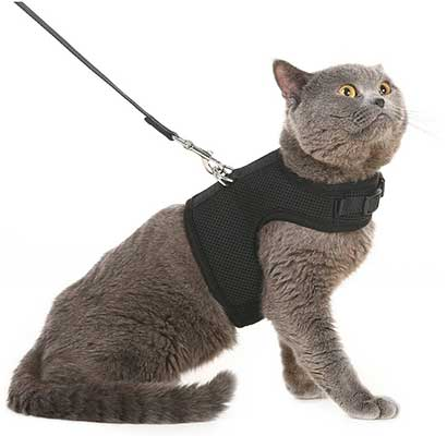 PUPTECK Checkered Frills Soft Mesh Dog Vest Harness Puppy