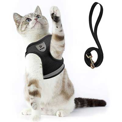 Cat Harness and Leash Set for Walking
