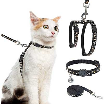 Cat Harness with Leash and Collar Set
