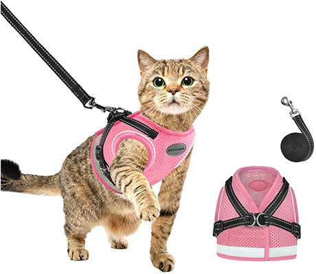 AVCCAVA Cat Harness and Leash for Walking