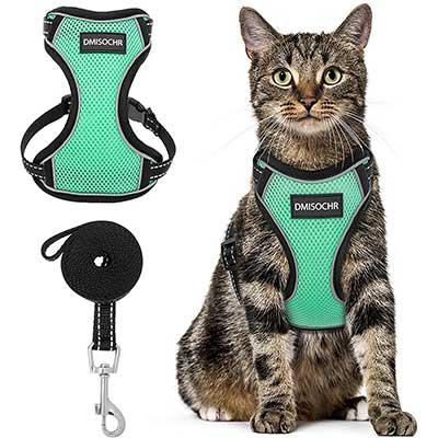 Cat Harness and Leash Set – Escape Proof Safe
