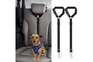 Best Dog Seat Belts Reviews