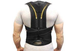 Best Back Support Belt Reviews